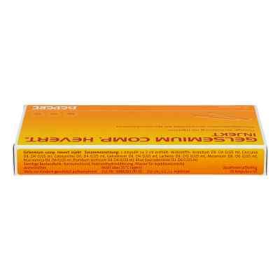 Gelsemium Comp.hevert injekt Ampullen  bei apo-discounter.de bestellen