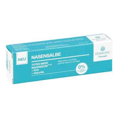 Dermasel Therapie Totes Meer Nasensalbe  bei apo-discounter.de bestellen