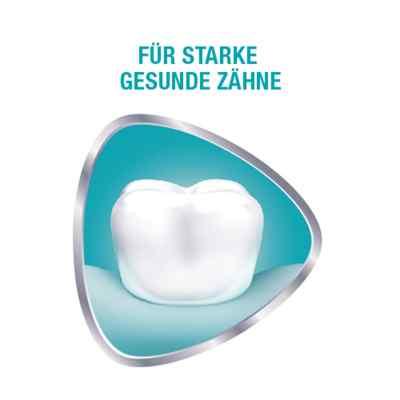 Sensodyne Proschmelz Repair Zahnpasta  bei apo-discounter.de bestellen