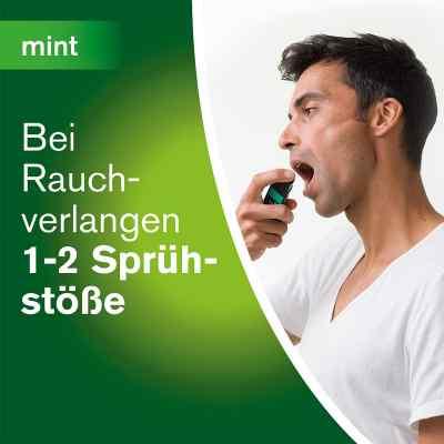 Nicorette Mint Spray 1 mg/Sprühstoss  bei apo-discounter.de bestellen