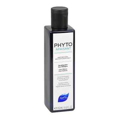 PHYTOAPAISANT Kopfhautberuhigendes Kur-Shampoo  bei apo-discounter.de bestellen