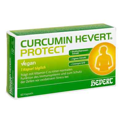 Curcumin Hevert Protect Kapseln  bei apo-discounter.de bestellen
