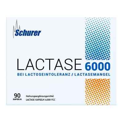 Schurer Lactase 6000 Kapseln  bei apo-discounter.de bestellen